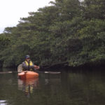 Mangrove Island – Soul Laundry with Fly Fishing